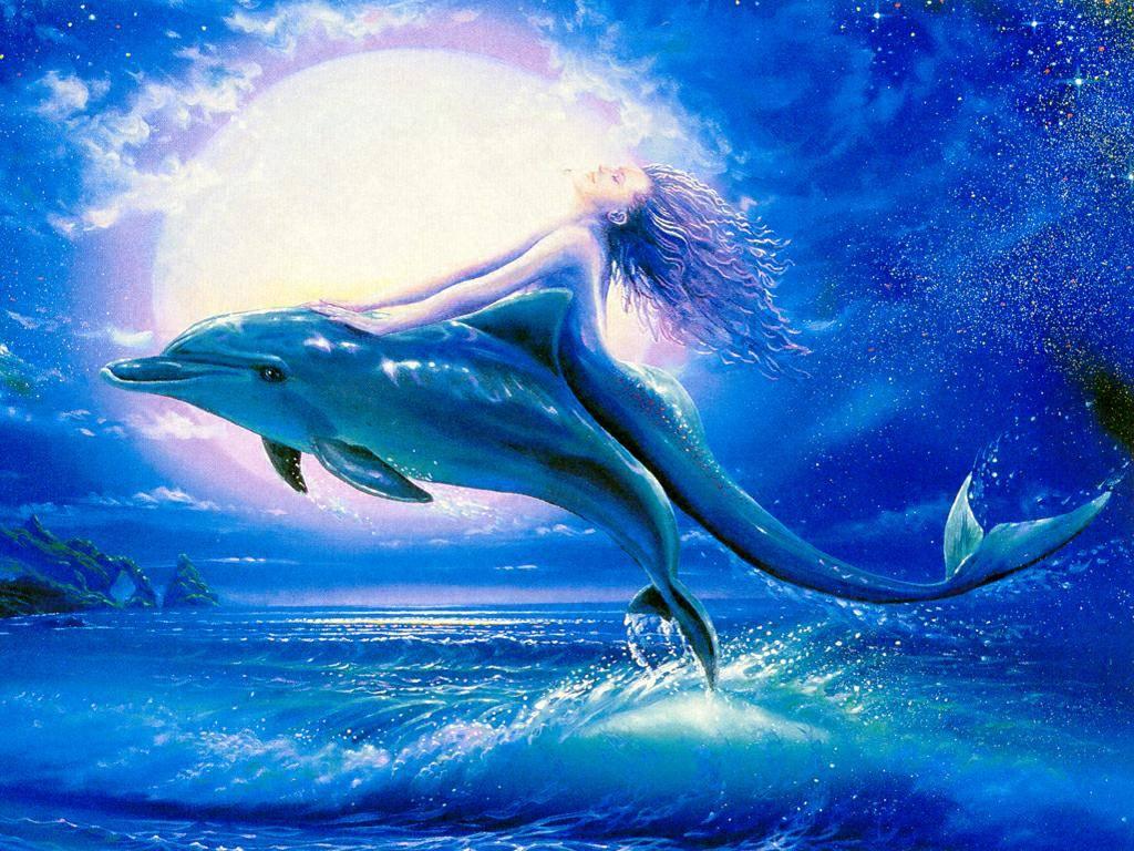 dauphins Ohlt3fbl